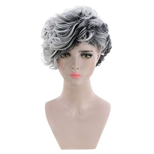 Baulody Gray White Short Wig Slightly Curly Synthetic Hair Wigs for White Women - Heat Resistant Fiber Daily Party Full Wig (White) ()