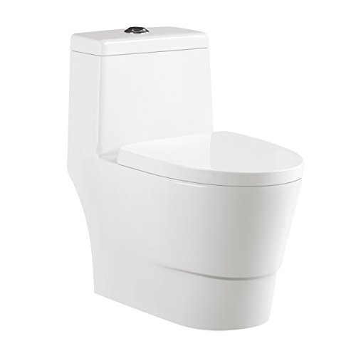 One Piece Toilet Dual Tornado Flush 12 Rough In Short Compact Bathroom
