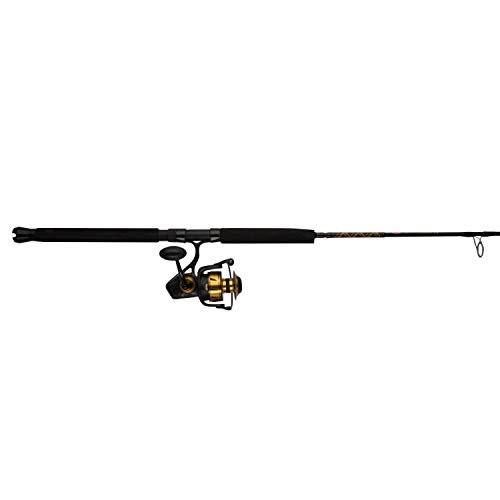 - Penn, Spinfisher VI Saltwater Combo, 5.6:1 Gear Ratio, 6