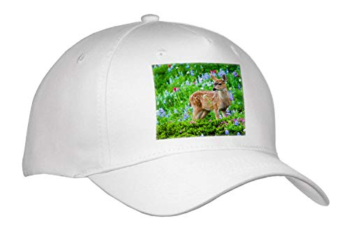 (3dRose Danita Delimont - Deer - Black-Tail Deer Fawn, Cascade Wildflowers - Adult Baseball Cap (Cap_315167_1))
