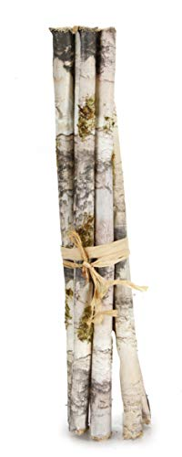 Darice HR38018 Floral Faux Birch Bundle 11.8 Inches, 11.75
