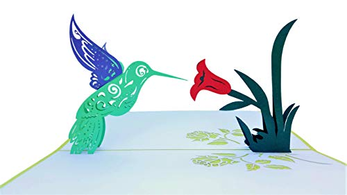 - iGifts And Cards Inspirational Hummingbird 3D Pop Up Greeting Card - Encouragement, Happy Birthday, Thinking of You, Get Well, Joy, Half-Fold, Blank, Bird Lover, Cute, Beautiful, Nature, Encouragement