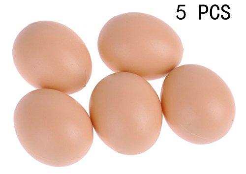 Egg House - 9