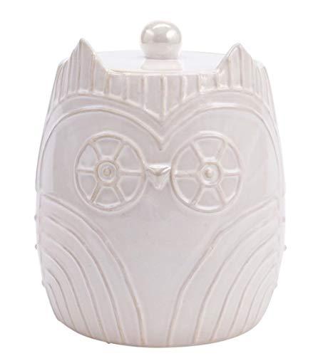 Hallmark Home Owl Cookie Jar White Ceramic 8