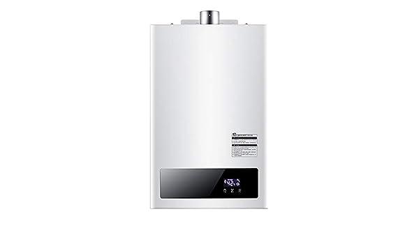 ATO ROMX Calentador de Agua de Gas propano licuado de Gas licuado de 240V / 40W, Calentador de Agua sin Tanque eléctrico instantáneo de 8L / 10L / 12L + Cabezal de