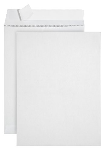 100 9 X 12 SELF SEAL Security Catalog Envelopes- Designed for Secure Mailing- Securely holds up to 60 Sheets of Paper with strong Peel and Seal Flap (100 Envelopes)