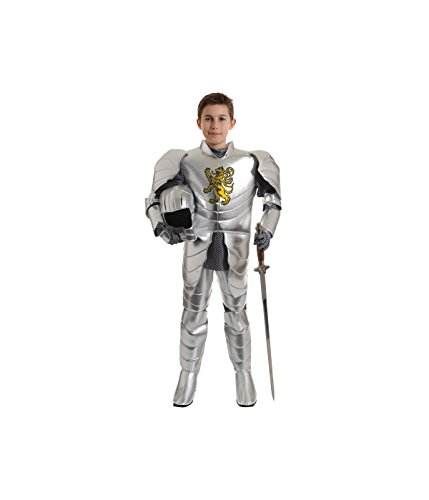 Little Boys' Medieval Camelot Knight Costume (Camelot Costume)