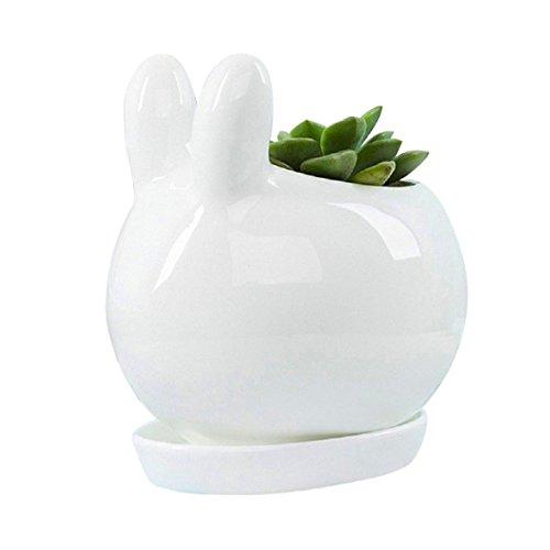 Top Cream White Small Animal Cub Cat Succulent Plant Pot/Flower Pot/Miniature Planter Pots With Tray (Rabbit) supplier