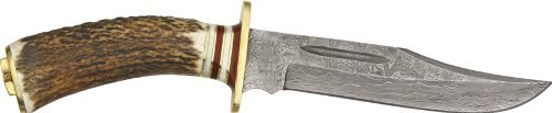 (Damascus El Dorado Skinner 10.25 inch Hunting and Skinning Knife with all natural Sambar Stag Antler Handle, Brass Pommel and Genuine Leather Sheath)