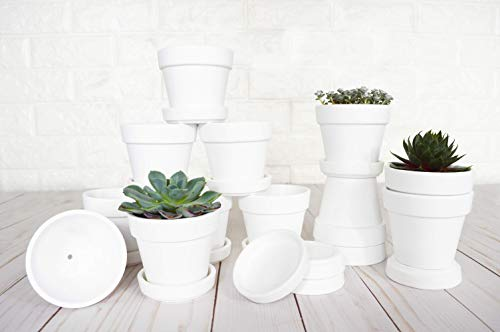 My Urban Crafts 12-Pack Small Terra Cotta Pots with Saucers - 2.5 inch Mini Clay Flower Pots Ceramic Pottery Succulent Planters - Great for Cacti Plants, Crafts, Wedding Favors (Matte White Bisque) ()