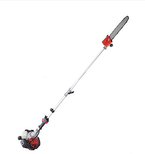 GOWE 52cc Long Reach Pole Chainsaw telescopic pole Petrol Chain Saw Brush Tree Cutter Pruner with 2 extend pole
