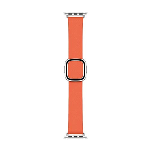 Apple Watch Modern Buckle (40mm) - Sunset - Medium