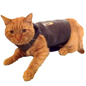 ThunderShirt-Classic-Cat-Anxiety-Jacket-Heather-Gray-Medium