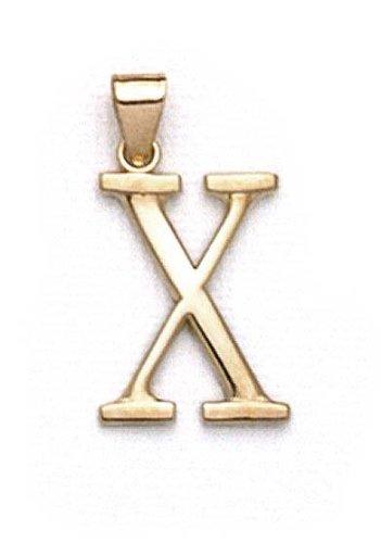"14 Carats Pendentif initiale X 1 3/8 ""longue JewelryWeb"