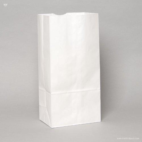 5 Lb Paper Bag - 3