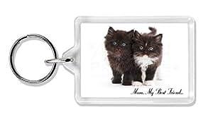 Gatitos 'Mum, My Best Friend' Foto llavero animal de regalo llenador de la media