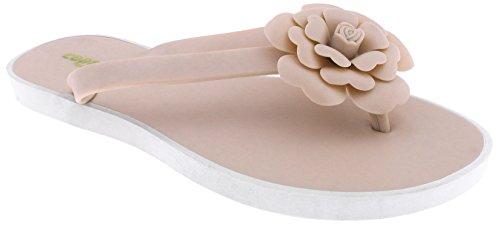 Capelli New York Damer Mote Flip Flops Med Gelé Blomst Naken 8