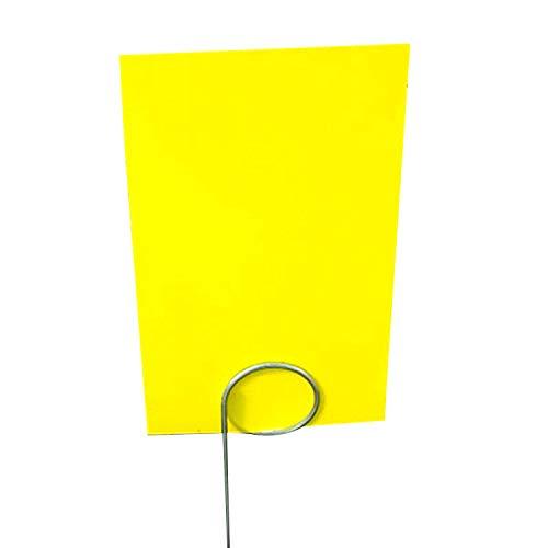 (Yellow 3