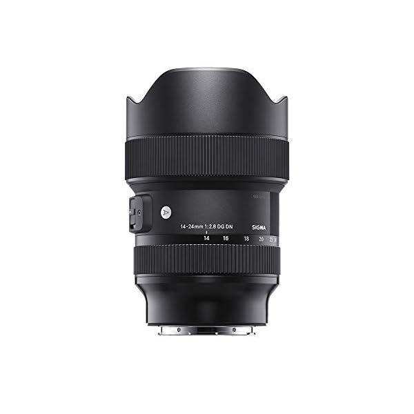 RetinaPix Sigma 14-24mm f/2.8 DG DN Art Lens for Sony E Mount Mirror-Less Cameras