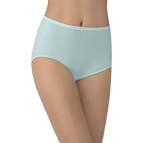 (Vanity Fair Women's Underwear Illumination Brief Panty 13109, Winter Opal, Large/7)