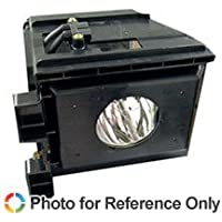 SAMSUNG HLR6167WX/XAA TV Replacement Lamp with Housing