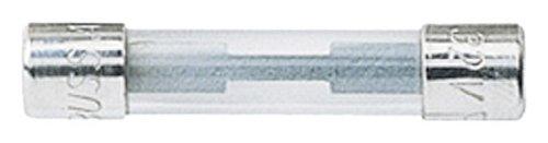 10 Piece Auto (Bussmann AGC-10 Auto Fuse, (5 Piece))