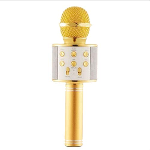 Wireless microphone professional condenser karaoke mic bluetooth stand radio mikrofon studio recording studio,gold ()