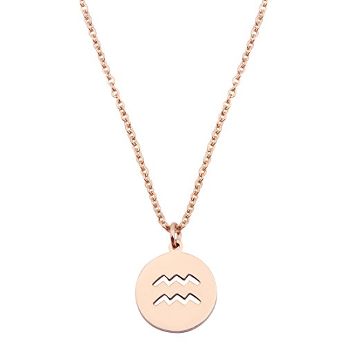 Zodiac Pendant Necklace Rose Gold Disc Horoscope Necklace Birthday Gift  Aquarius Rg