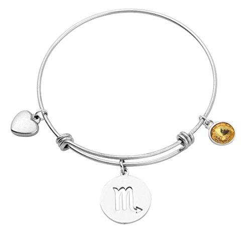 (KUIYAI Stainless Steel Zodiac Sign and Birthstone Charm Necklace Bracelet (November-Scorpio Bracelet))