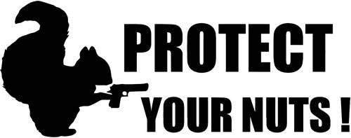 Protect Your Nuts Squirrel Vinyl Decal Sticker Car Window Wall Bumper Funny SL