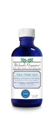 Synergy Richards Organics Wellness Healing