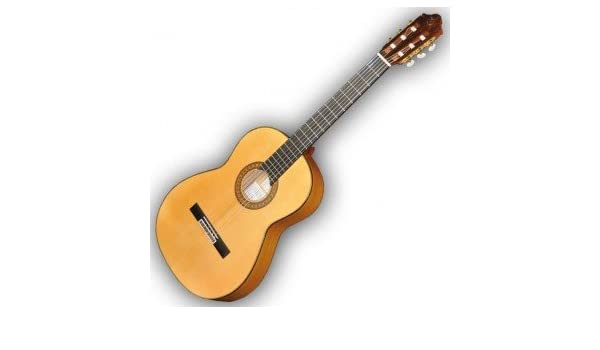 Campamentos Primera-e -Guitarra Flamenca Electro Negra: Amazon.es ...
