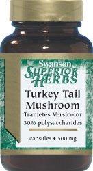 Турция Хвост грибов 500 мг 120 капсул