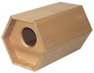 Cedro Mallard nido Kit