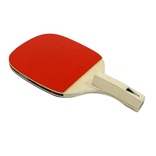 Champion V1.2P Table Tennis Paddles Penholder Grip Ping Pong Racket Bats Blades by WOMUL