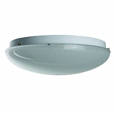 Sunlite AM22SFR 8-Inch Fluorescent Circline Ceiling Fixture, White Finish with Shallow Frost Ribbed Plastic