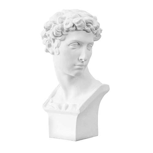 (Gjiner 5.9''-7.48'' Plaster Bust Statue Resin Casting Painting Sketch Figurines-Michelangelo Sculpture David Venus Apollo-for Home Decoration Art Hobbyist Medici)