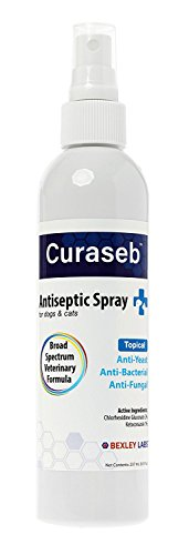 Bexley Labs Curaseb | Chlorhexidine Spray for Dogs & Cats - Anti Itch, Antifungal & Antibacterial w/Aloe - Effective Against Ringworm, Yeast & Pyoderma, Broad Spectrum Vet Formula, Guarantee