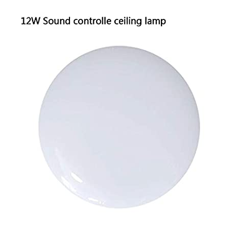 Smart Home Motion Sensor/Sounds Control LED Ceiling Lights ...