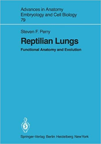 Reptilian Lungs: Functional Anatomy and Evolution (Advances in ...