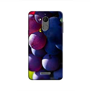 Cover It Up - The Grapes Coolpad Note 5 Hard case
