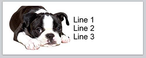 150 Personalized Return Address Labels Cute Boston Terrier Dog (bx 353)
