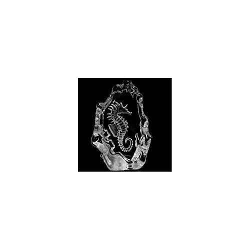 Mats Jonasson Seahorse Crystal (Mats Jonasson Crystal)