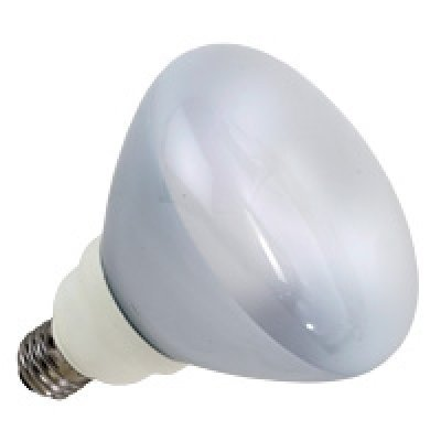 - ProLume CFL23/27/R40/DIM 46329 23W R40 DIMMABLE 2700K MED ProlumeME, 6 Piece