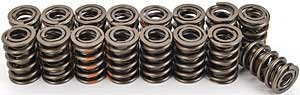Competition Cams 928-16 Dual Valve Spring