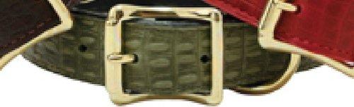 "Auburn Leather Savannah Reptile Print Dog Collar- Olive 20""-24"""