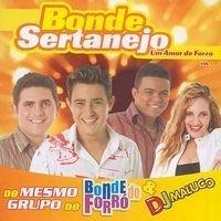 Bonde do Forro - Bonde Sertanejo Um Amor De Forro Vol. 1 - Amazon.com