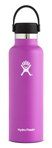 Hydro Flask 24 oz Double Wall Vacuum Insulated Stainless Steel Leak Proof Sports Water Bottle, Standard Mouth with BPA Free Flex Cap, Raspberry