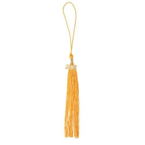 GraduationForYou Academic Graduation Tassel With 2019 Year Charm , Available For 2019 Graduation ()