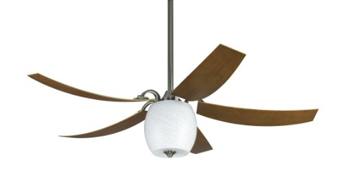 Fanimation FP7930PWW-220 Mariano 5-Blade Ceiling Fan, Pewter/Cherry Review